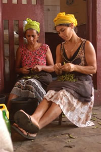 Working women of Cape Verde